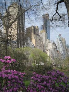 Central-Park-West-skyline